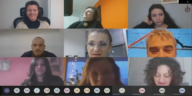 Screenshot of the online meeting